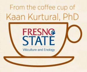 Kaan_Cup