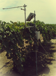 fig_1_crop