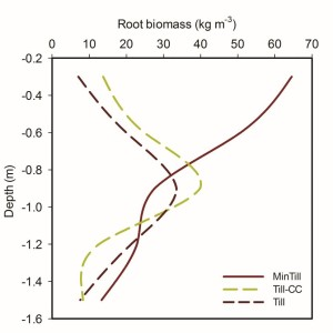 Figure 2: RBM Grape root biomass distributions (kg per m3) measured at five 30 cm depths in the three tillage treatments. Fine root biomass (less than 2 mm) increased in the top plow (Ap) horizon under minimum tillage.