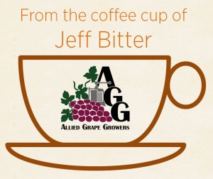 Jeff Cup