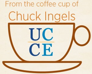 Chuck_Cup