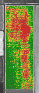 Figure 2: Areas of weaker grapevine growth shown in red in a PurePixel® vegetation map.