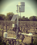 Development of Virtual Weather Stations in Lodi