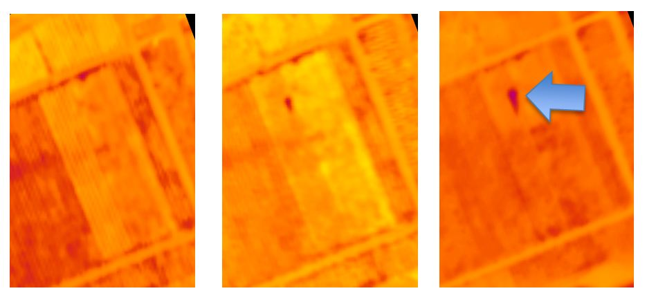 Figure 1:Thermal View of Progression of Irrigation Leak at the UC Davis V&E Department Vineyard in from of May 1st to May 15th 2014.