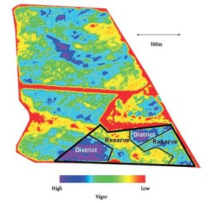 "Figure 6.11: Harvest management zones resulting from topography in hilly 2.5 ha (6 ac) Chardonnay block as shown by NDVI imagery. Low- and moderate-vigor zones produced ""reserve"" quality wine, while the high-vigor zone produced lower ""distinct"" quality. Photo: Johnson et al. 2001."