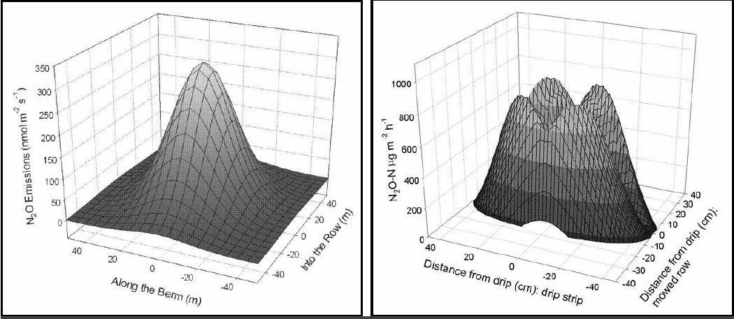 Figure 7: Spatial models of emissions after drip fertigation with 7.5 pounds N per acre using KNO3 show how the N2O plume in the drip zone can be quantified spatially. Left panel shows a plume resulting from continuous N application in 20 gallons of fertigation solution over six hours. Right panel shows effects when nitrogen applied through the drip system was pulsed at hour-3, then chased with two hours of irrigation water (REPRINTED WITH PERMISSION OF THE AMERICAN CHEMICAL SOCIETY, OR, from D.R. Smart et al. N2O emissions and water management in California perennial crops. pp. 227-255 In Guo, L, AS Gunasekara and LL McConnell (Eds.) Understanding Greenhouse Gas Emissions from Agricultural Management, American Chemical Society, Baltimore, Md.