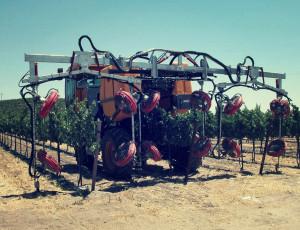 Photo: Vine Tech Equipment