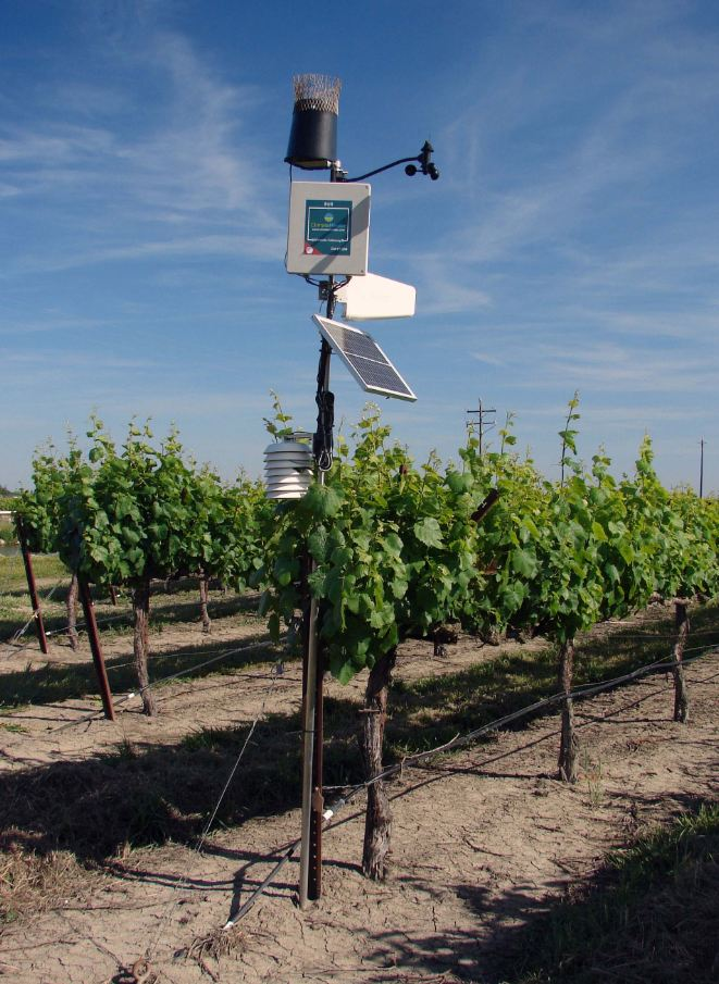 Fig. 6.  A vineyard weather station. Photo: Progressive Viticulture, LLC ©