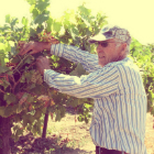 Lodi Growers Boost Knowledge about Grape Pest Management