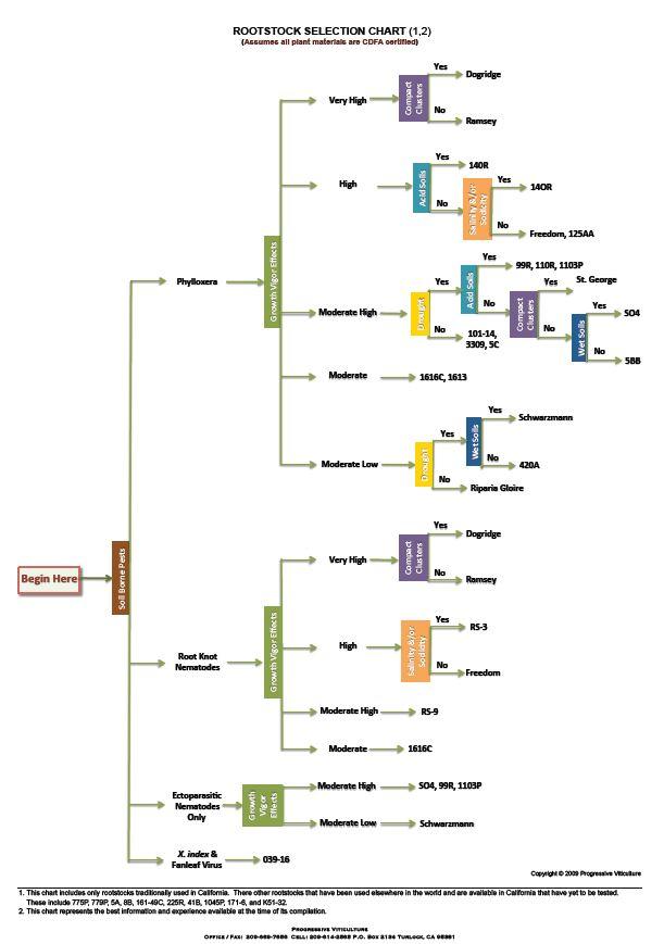 Grape Vine Diagram Blank - DIY Wiring Diagrams •