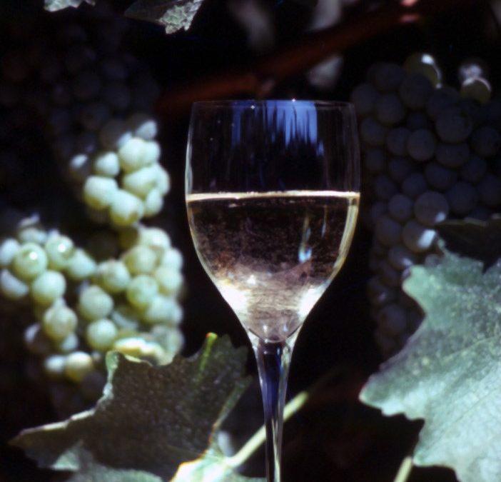 SOME WINE MAKING PROBLEMS & VINEYARD MANAGEMENT