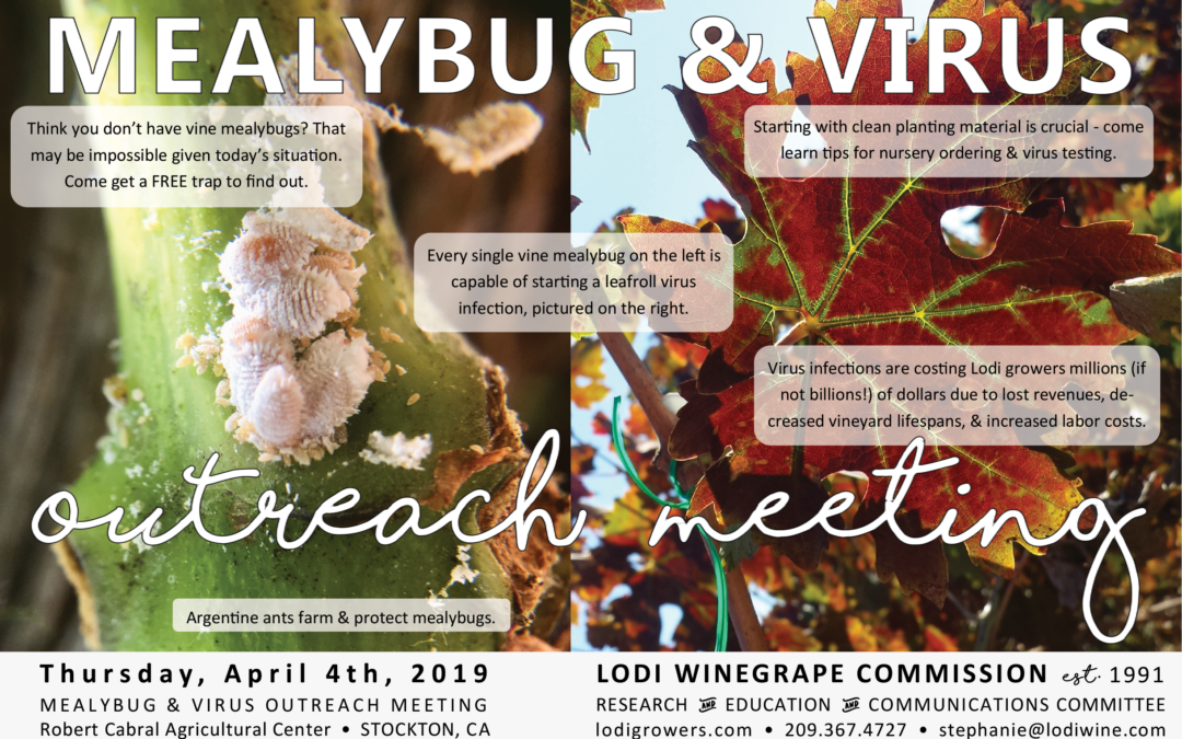 LODI MEALYBUG & VIRUS OUTREACH MEETING on April 4th!