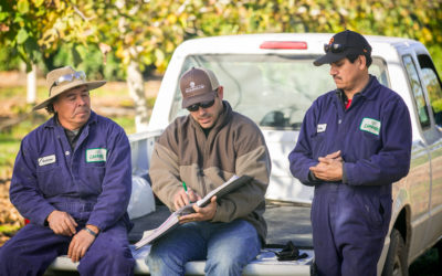 CAL/OSHA ENFORCEMENT TRENDS IN AGRICULTURE
