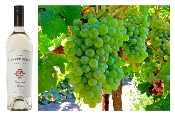 A LODI WHITE WINE MAKES THE WORLDS TOP 100 LIST