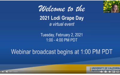 2021 LODI GRAPE DAY RECORDING NOW AVAILABLE