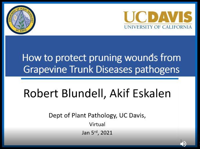CD11 LODI IPM NETWORK BREAKFAST MEETING WITH DR. AKIF ESKALEN | 1.5.2021