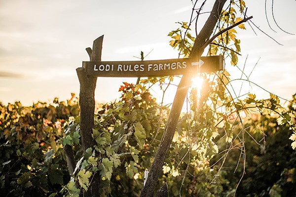 LODI RULES WHEN IT COMES TO SUSTAINABILITY
