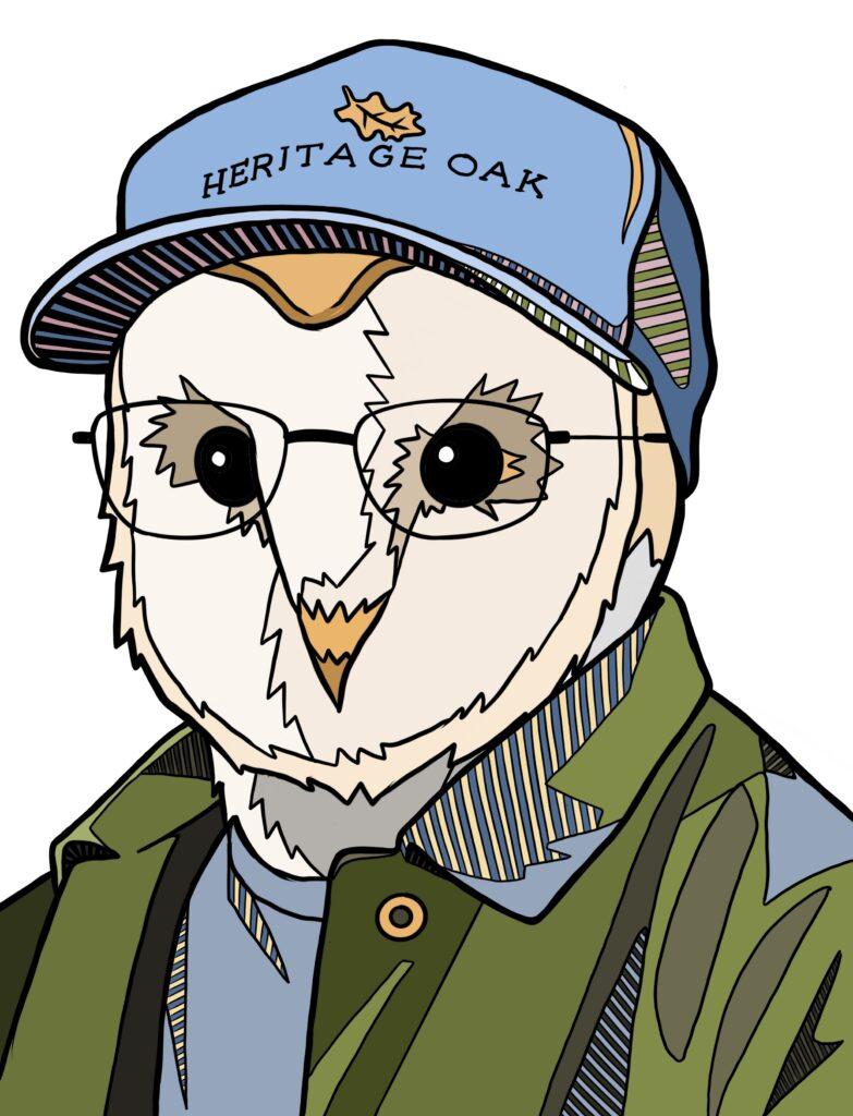 Owl Box Tom
